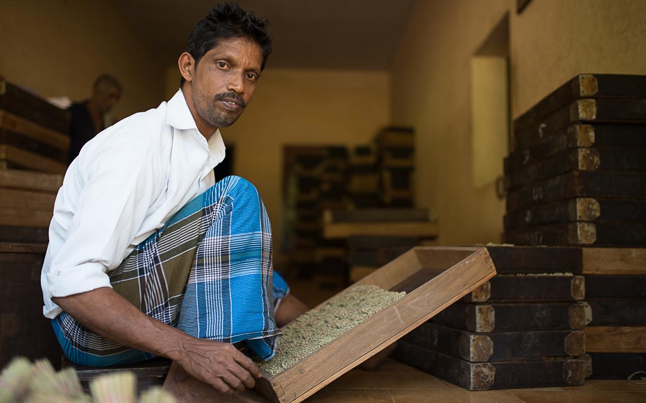 Beedi workerDSC_4851